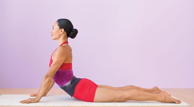 Tư thế Cobra Pose - Yoga cho người mới bắt đầu
