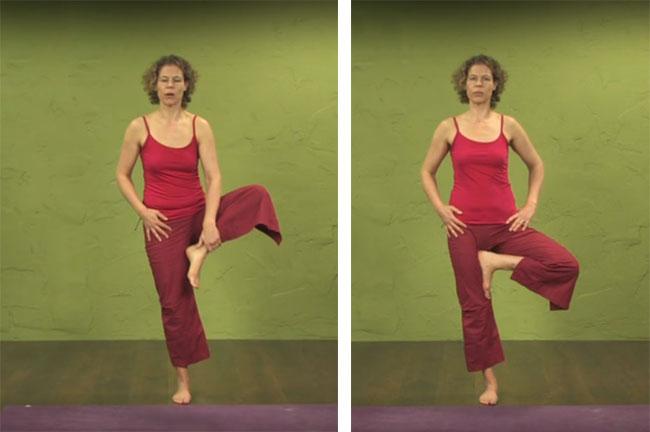 Tư thế Tree Pose - Yoga cho người mới bắt đâu 1