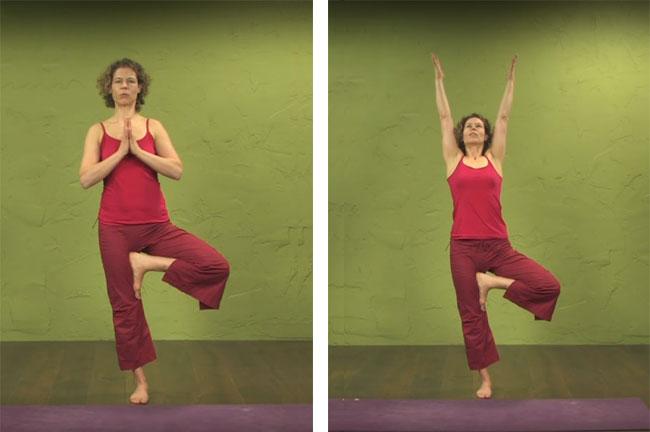 Tư thế Tree Pose-Yoga cho người mới tập